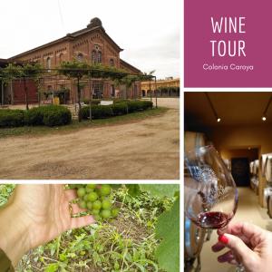 Wine Tour Colonia Caroya