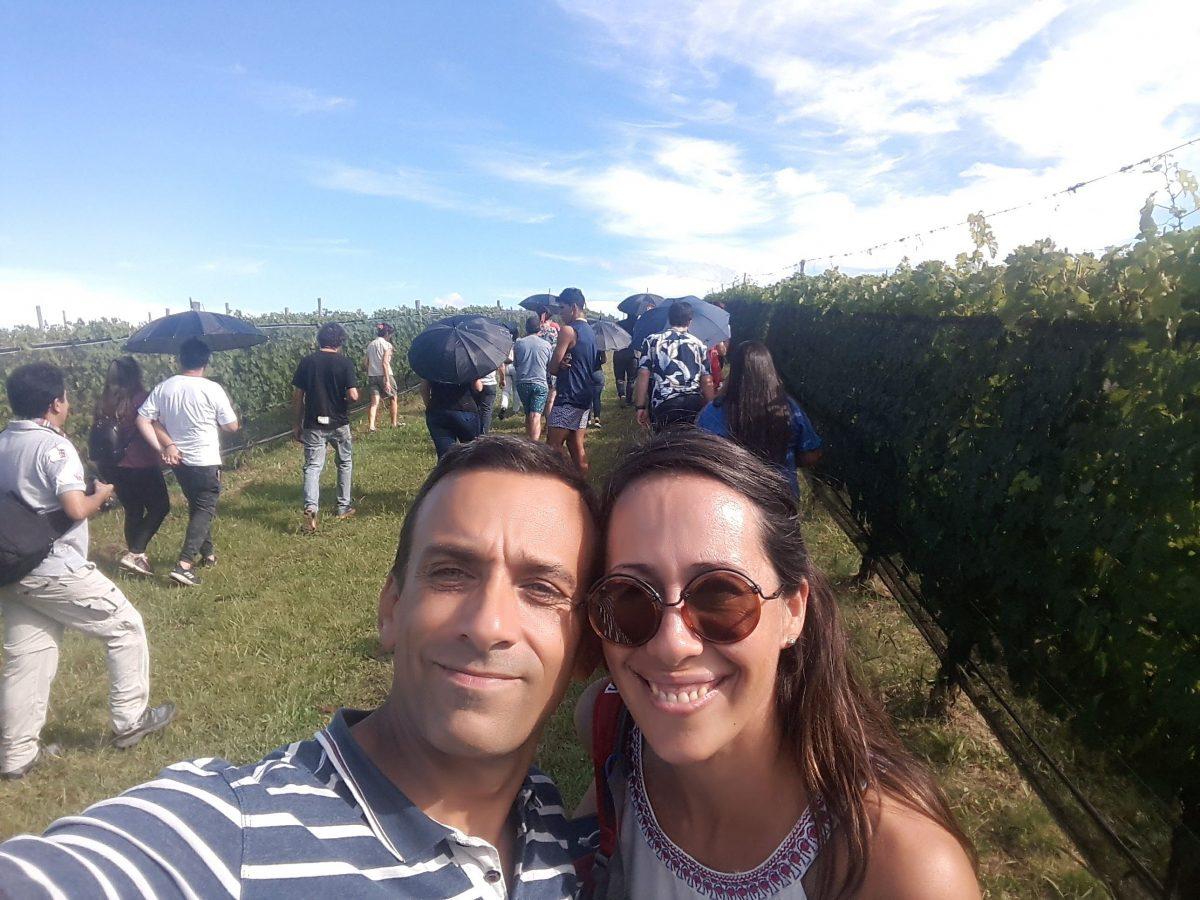 Wine-Tour-Grupal-Bodega-Terra-Camiare-Sala-viñedo