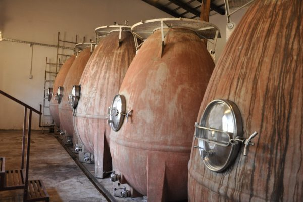 Bodega-La-Matilde-Traslasierra-Córdoba-Wine-Tour-Huevos-Hormigón