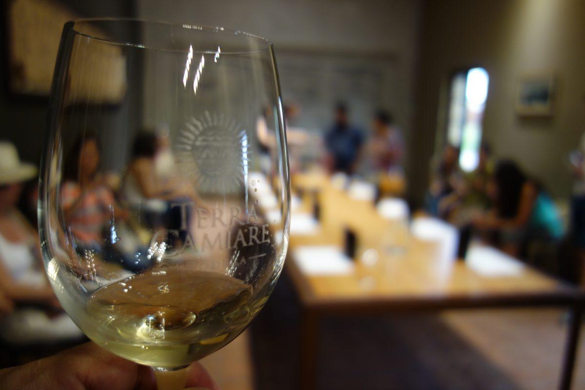 Wine-Tour-Grupal-Bodega-Terra-Camiare-Sala-Degustación
