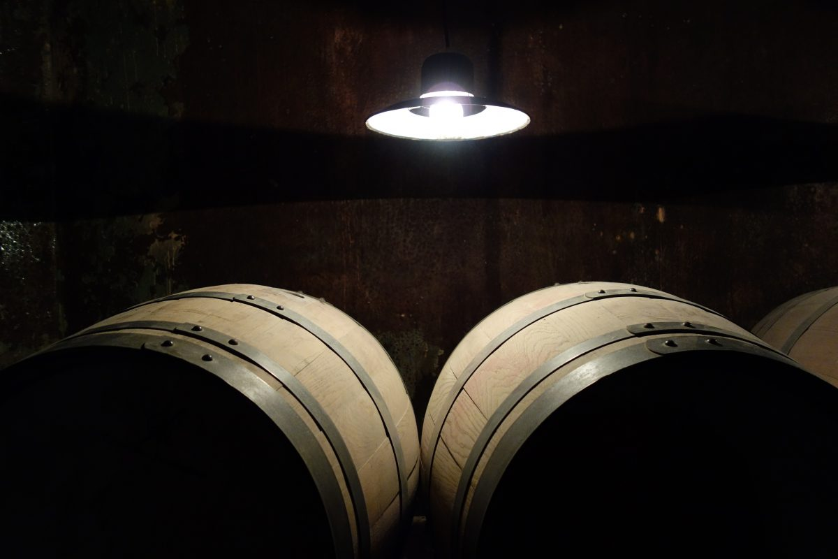 Wine-Tour-Bodega-La-Caroyense-Córdoba-Colonia-Caroya-Cava