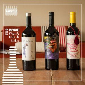 Wine Pack Corte de Tintas Vino Argentino Delivery de vinos en Córdoba Comprar vinos de autor en Córdoba Venta de vinos boutique en Córdoba