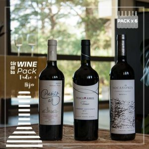 Wine-Pack-Padre-e-Hijo-Cabernets-x-6