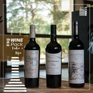 Wine-Pack-Padre-e-Hijo-Cabernets-x-3
