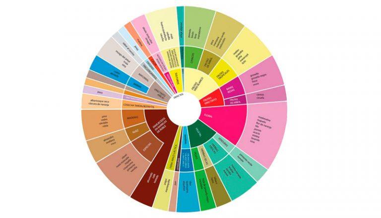 rueda-de-aromas-del-vino