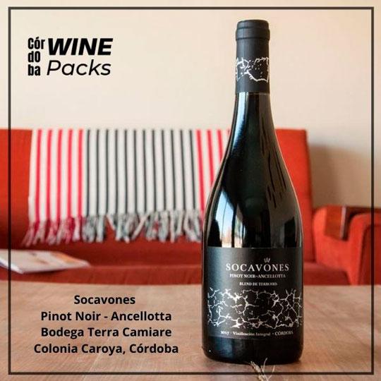 Vino-socavones-pinot-noir-ancellotta