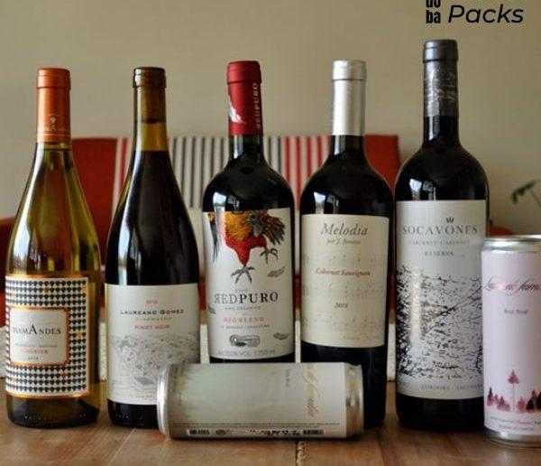 Wine Pack x 6 brindemos