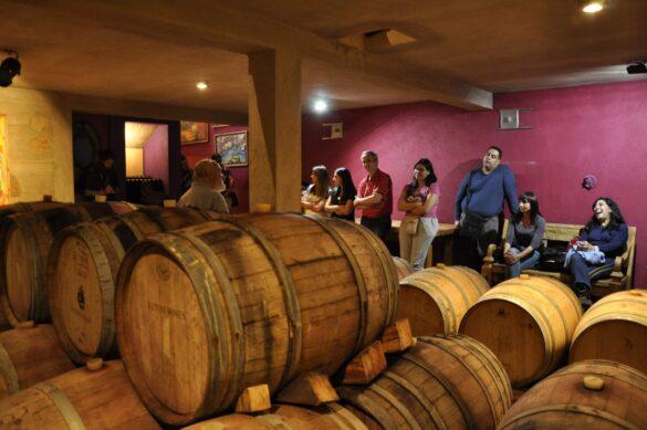 Wine Tour Traslasierra 2019 _ 3