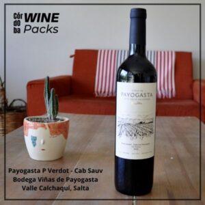 Vino Payogasta Petit Verdot Cab Sauvignon